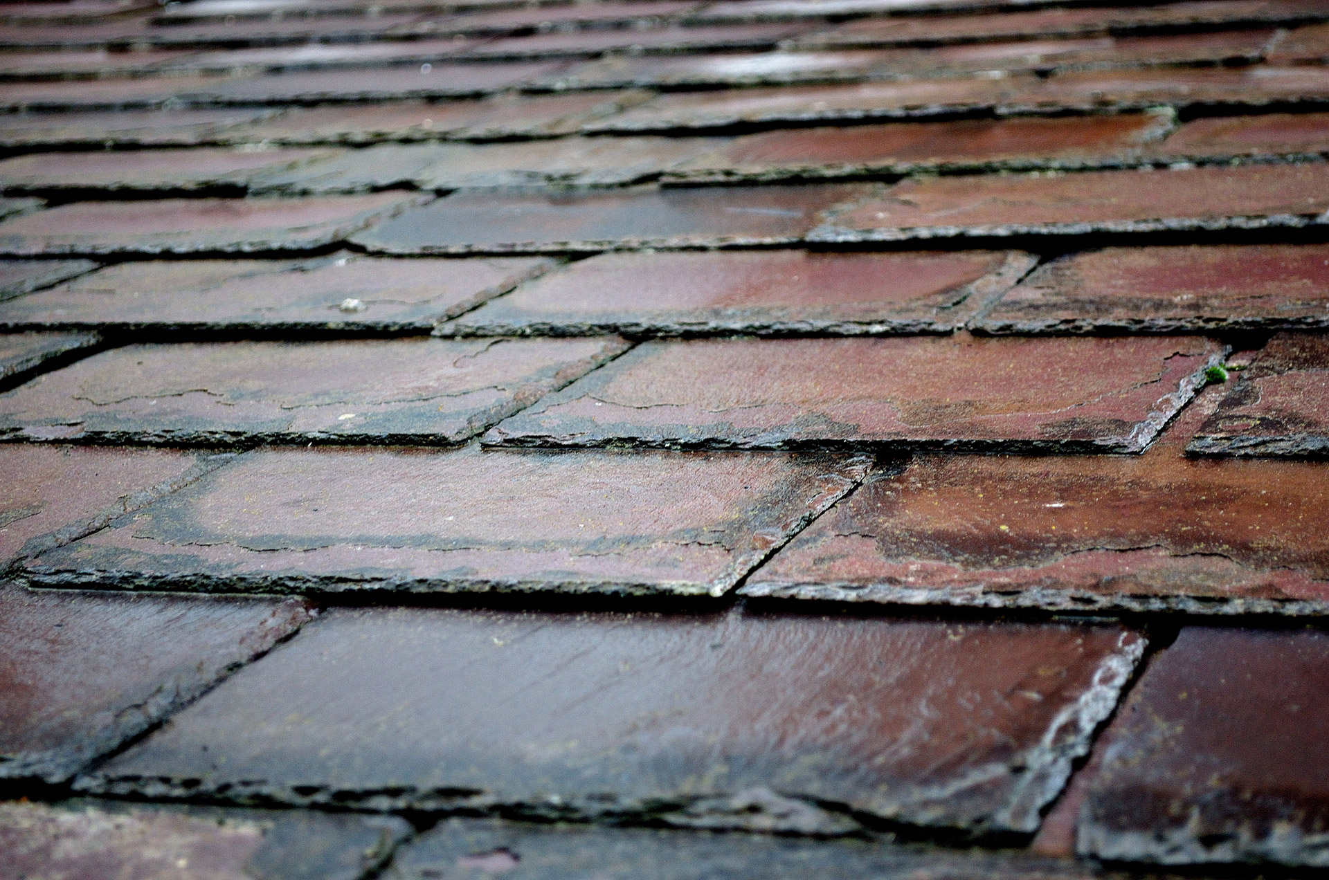 4 Tell Tale Signs That Your Roof Needs To Be Replaced